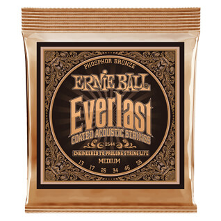 Ernie Ball Phosphor Bronze Everlast CTD M 13-56
