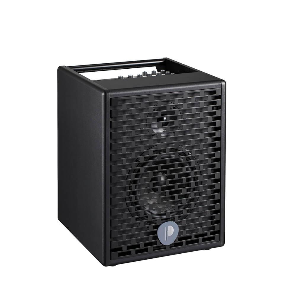 Prodipe Natural 6 Acoustic Amplifier
